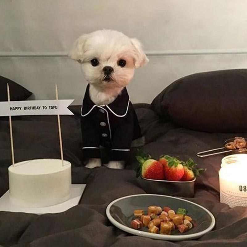 Pet Bulldog Francese Pigiami Moda Animali Cani Abbigliamento Cucciolo di Chihuahua Vestito Cani di Piccola Taglia Media Costume Pet Vestiti Ropa Perro