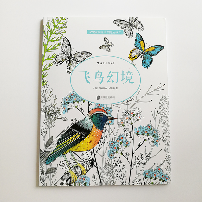Flights Of Fancy: A Winged Journey Through Pattern And Colouring  RELAXING Coloring Book For Adults/Children By Elizabeth James