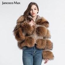 mapache de abrigo de