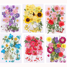 1 adet renkli gerçek kurutulmuş çiçek UV epoksi reçine kalıp dolguları dekorasyon kendin yap kolye takı yapımı el sanatları aksesuarları