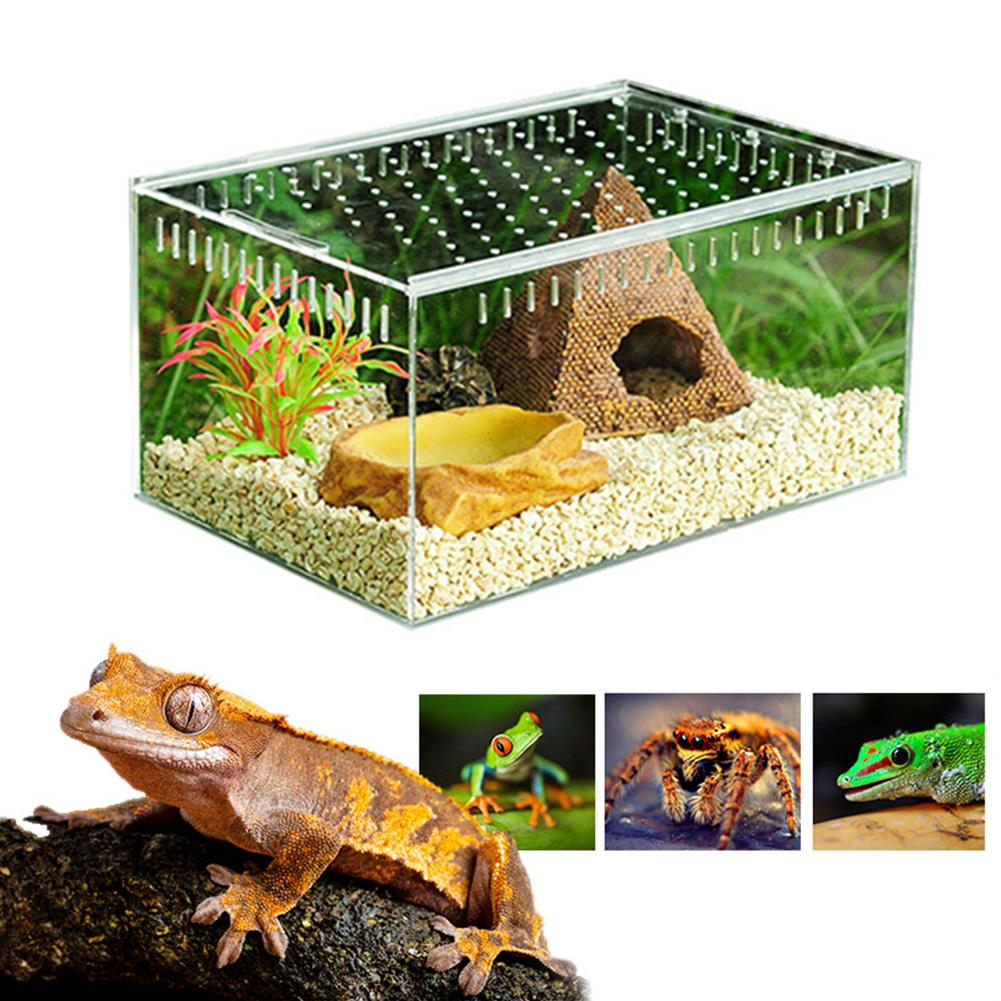 Reptile Breeding Box Acrylic Transparent Sliding Cover Reptile Tank Insect Spiders Tortoise Lizard Feeding Box Terrarium