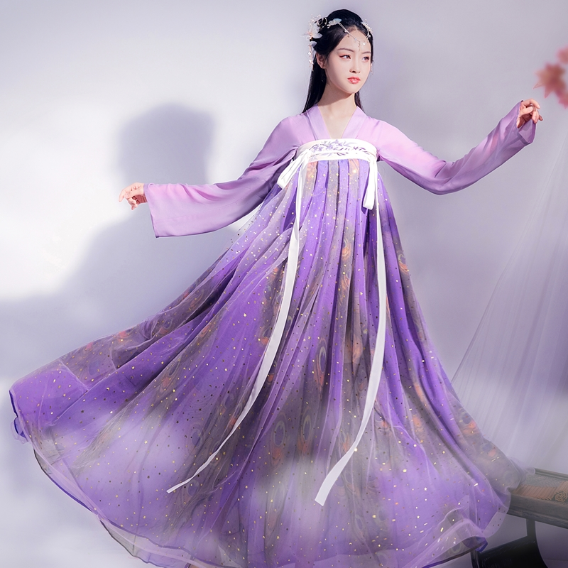 Chinese Traditional Dress Ladies Fairy Dress Folk Dance Embroidery Party Stage Performance Purple ханфу Costumes New Arrival