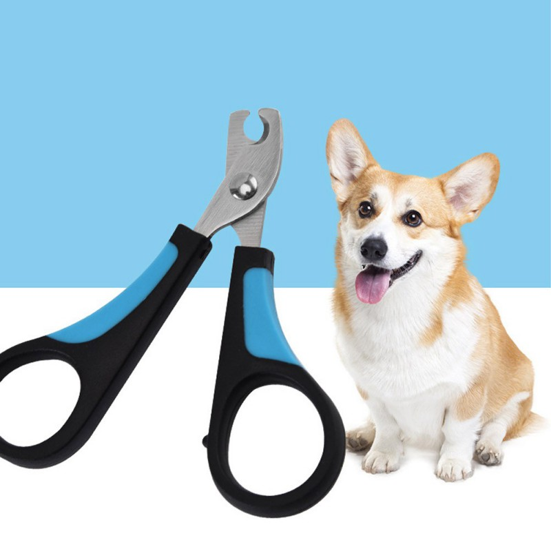 Portable Professional Dog Cat Nail Clippers Pet Cat Nail Scissor Stainless Steel Pet Puppy Nail Cutter Foot Grooming Accessories