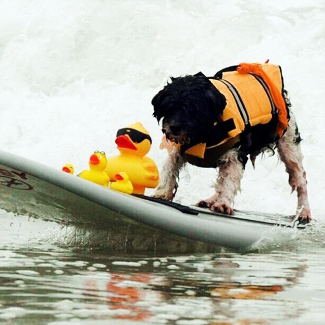 Adjustable Dog Life Jacket Vest - Rescue Swim Wear 4