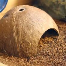 Réptil esconder habitat casca de coco natural lagarto aranha pequeno animal caverna casa