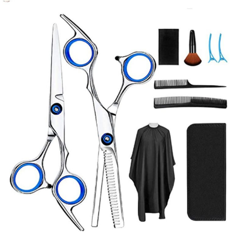 10 Pcs Professional Hair Cutting Scissors Set Thinning Shears Hair Razor Comb Clips Cape Hairdressing Kit Barber Home