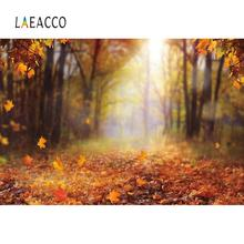 Laeacco Forest Tree Backgrounds For Photography Autumn Fallen Leaves Maples Way Natural Scenic Photo Backdrops For Photo Studio kate winter backdrops photography ice snow tree scenery photo shoot white forest world backdrops for photo studio