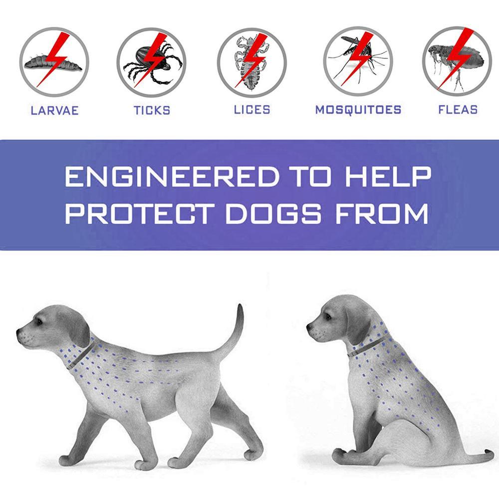 Dewel Anti Flea Ticks Insect Mosquitoes 8 Months Protection Waterproof Long Lasting Dog Collar Custom Puppy Cat Pet Collars 3