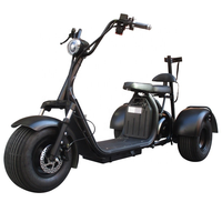 City Escooter 3Wheel Golf Cart EEC COC Approved Electric Cargo Tricycle Citycoco Golf Bag Cart Trike Motorcycle Electric Scooter 2