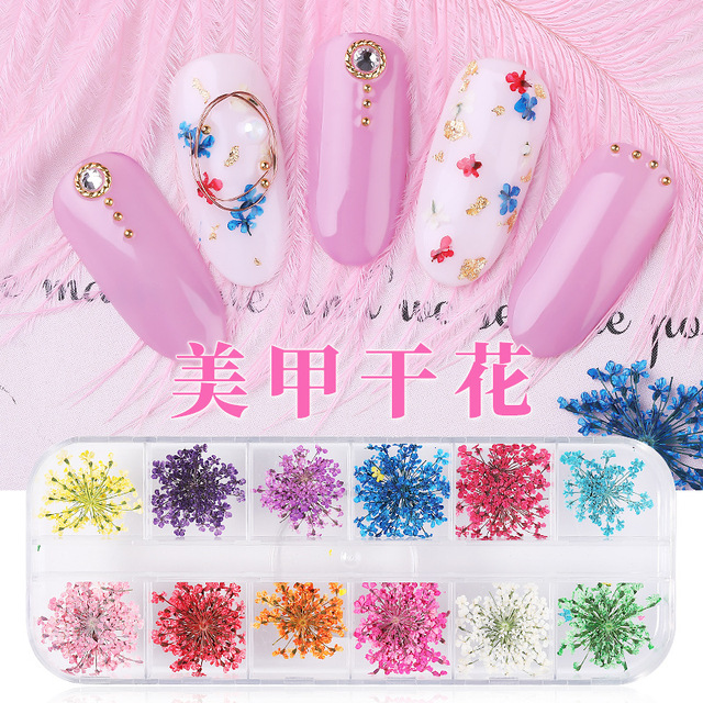 1 Box 3D Dried Flower Nail Decoration Natural Floral Sticker Mixed Dry Flower DIY Nail Art Decals Jewelry UV Gel Polish Manicure 5