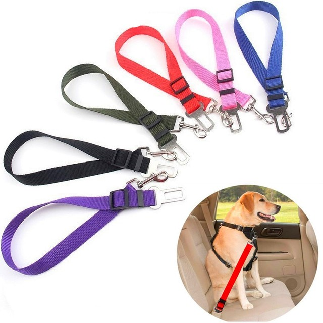 Safety Pet Travel Leash For Dogs & Cats 1