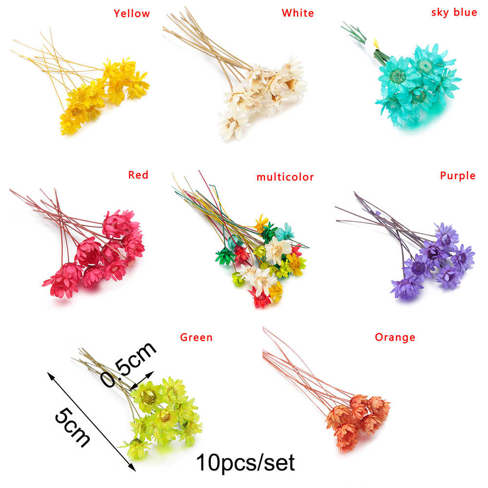 10Pcs Mode Brasilianische stern Trockenen Blume Epoxy Harz Handwerk Füllung Materialien Harz Füllstoff Silikon formen Schmuck Machen Lieferungen
