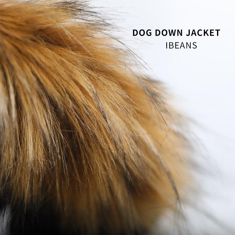 Зимние теплые с рисунком собачки и котика куртка на пуху, одежда для собак, легкий пуховик на утином пуху с воротником с капюшоном французского для бульдога Чихуахуа собаки пальто лыжный костюм-1