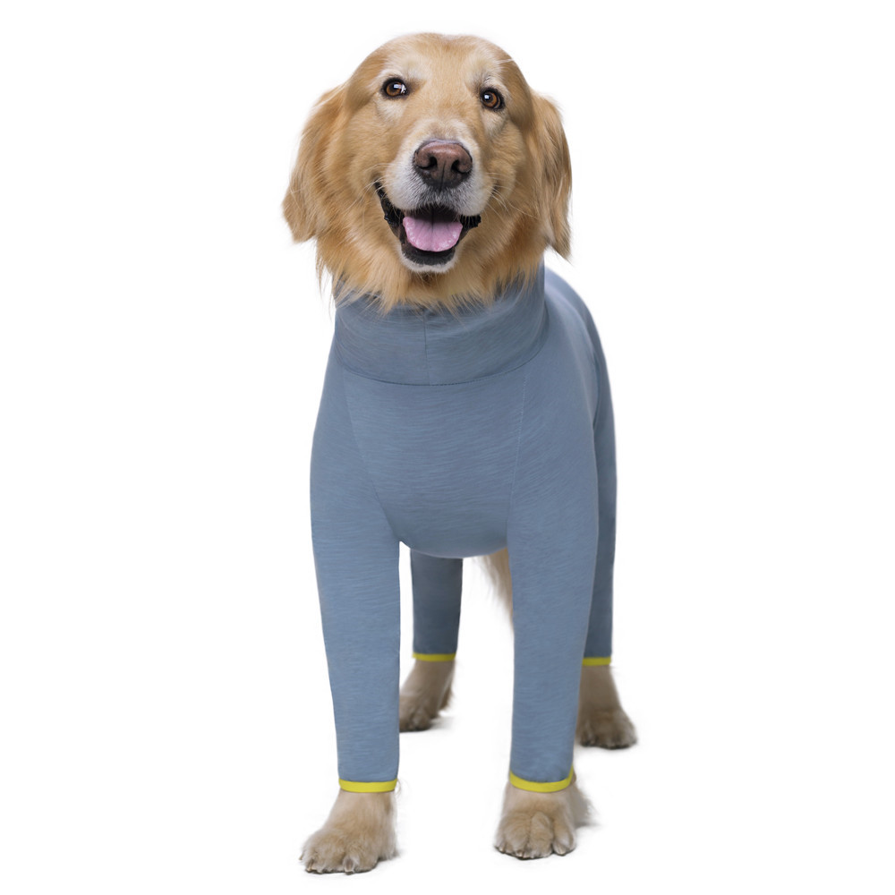 Pet dog costume (8)