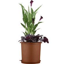 Meshpot 6.3 Inches Plasitc Orchid Pot Double Layers Garden Pot, Planter Excellent Drainage,Maximum Air Holes Flower Pot