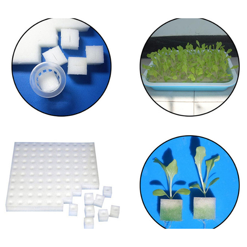 New Soilless Hydroponic Vegetables Nursery Pots Nursery Sponge Flower Seed Cultivation Soilless Cultivation System Seed Trays