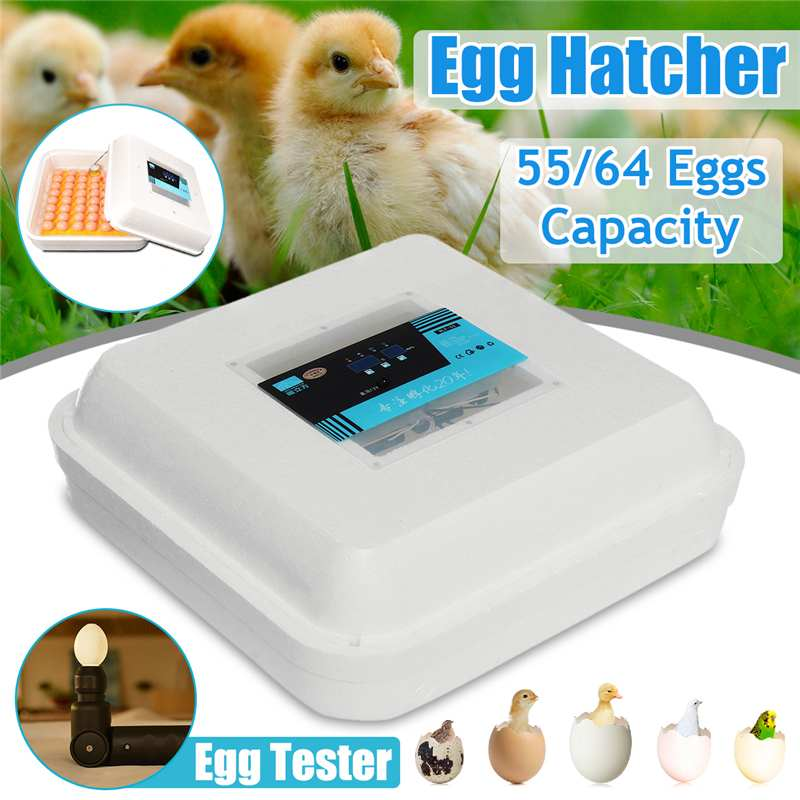 55/64 Position Eggs Automatic Incubator 50W LED Egg Incubator Poultry Hatcher Fully Automatic Home Hatching Machine12V/110-240V