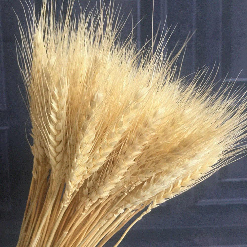 100 adet/grup yapay buğday kulakları doğal kurutulmuş çiçek tahıl düğün buketi parti dekorasyon DIY el sanatları karalama defteri ev dekor