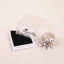 Funny Boxed Fossil Insect Specimen Interesting Teaching Materials Crafts Home Decoration Accessories Random Style