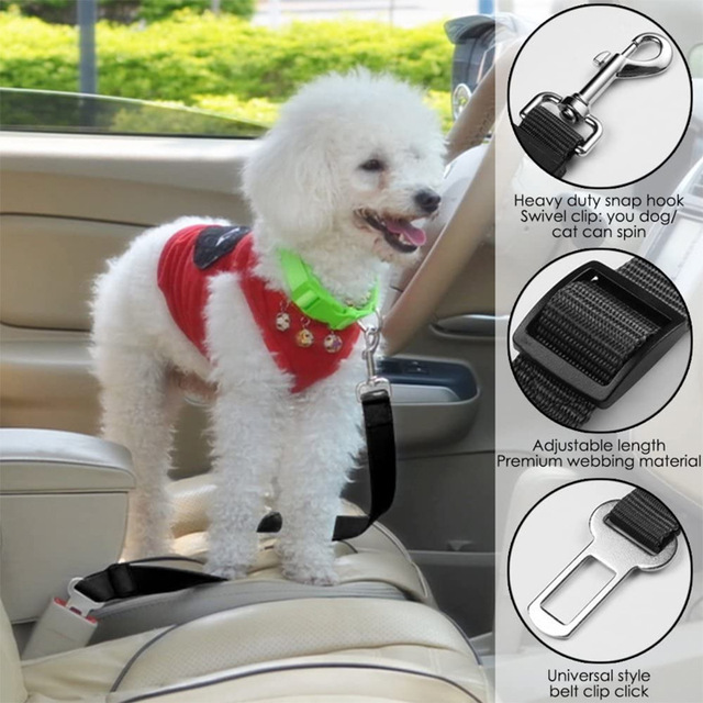 Safety Pet Travel Leash For Dogs & Cats 3
