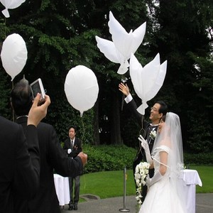 White Dove Balloons Wedding Party Decorations Flying Peace Dove Peace Bird Marriage Helium Balloon Bride And Groom Decor(China)