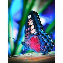 Diamond Painting Butterfly DIY Embroidery Decoration Home Picture of Rhinestone Animal