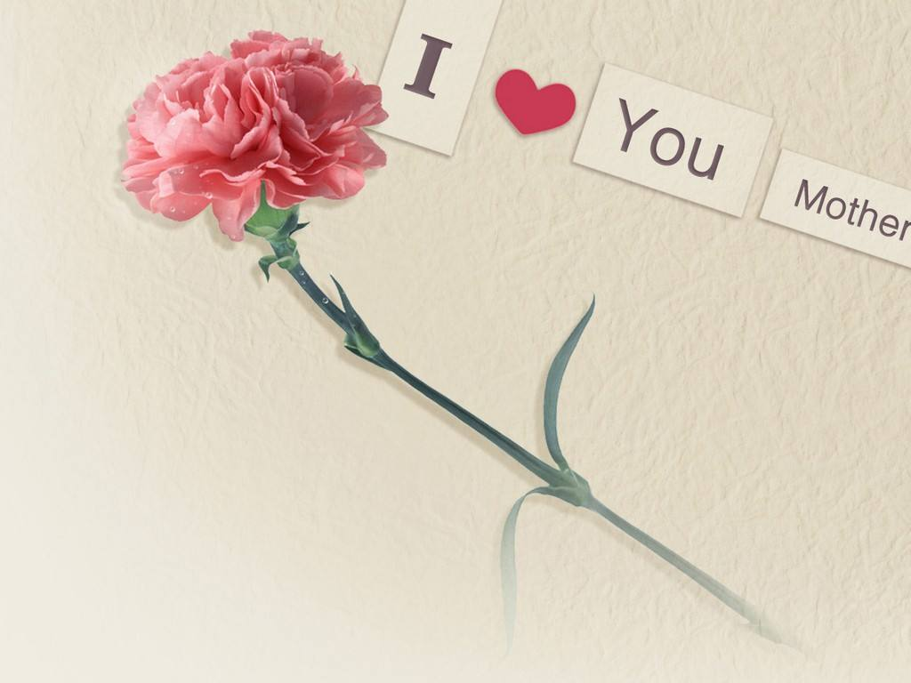 母亲节送花的祝福语 母亲节送花卡片怎么写最感动