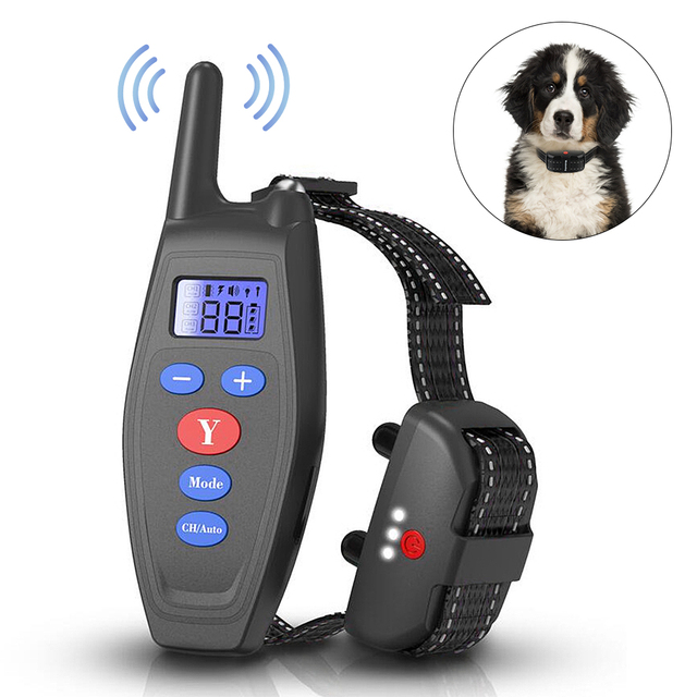 Soft & Gentle Training Dog Collar 1