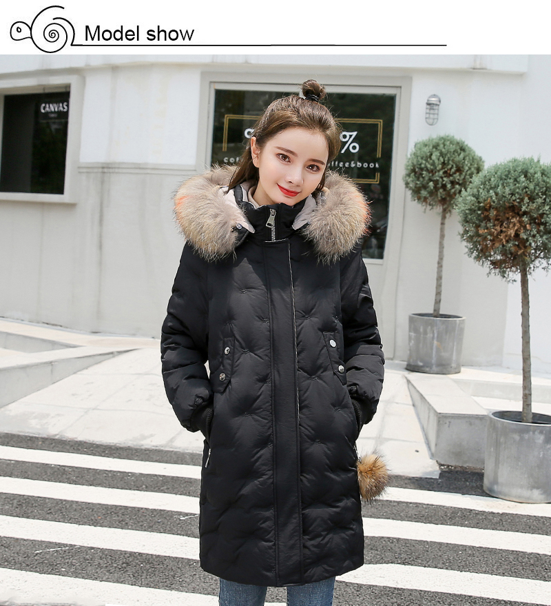 Women&39;s Jacket Large Size 2019 Female Long Hooded Fur Collar Parka_A2_3