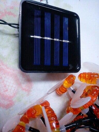 Lâmpadas solares Bonito String Abelha