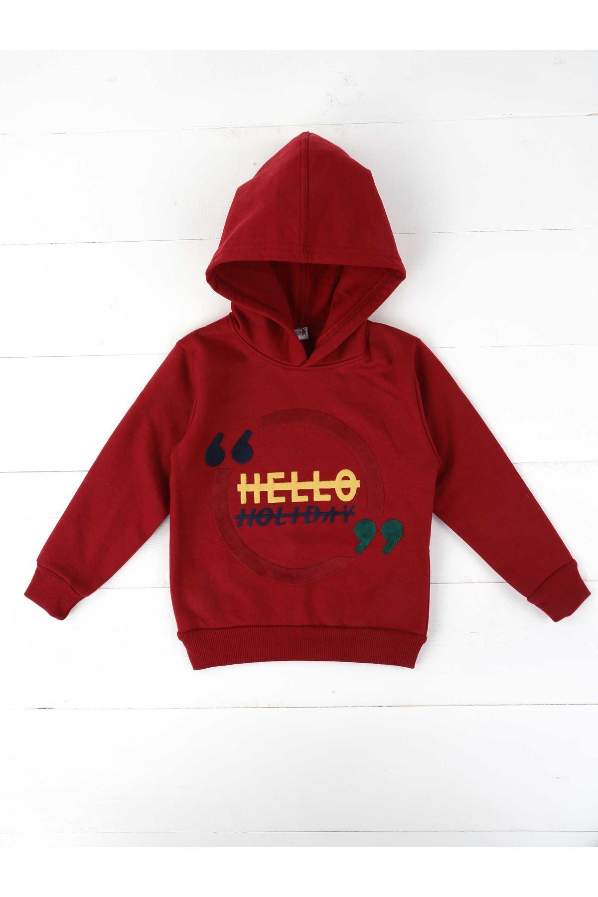 Burgundy Seasonal Hooded Male Child Sweatshirt