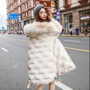 Image 3 - Winter hot style embroidered white duck down embroidered down jacket female new fashion 2019 womens long coat