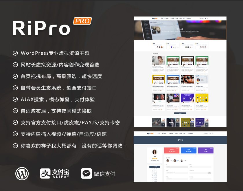 RiPro6.9日主题破解版解密源码无限制版去授权-天盈博客