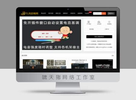 原创九鸿音频网整站源码测试勿买