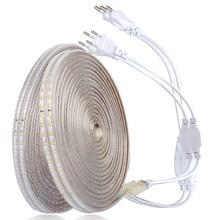 Ruban lumineux étanche, 220V, 3014 diodes/m, Tube en Silicone, 1M/2M/3M/4/5/6/7/8/9/10/15/20M + prise d'alimentation