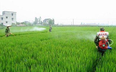 打完农药如何解毒 出现农药中毒怎么解决-养生法典