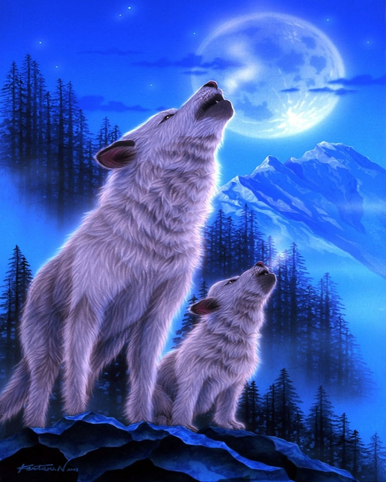 Painting By Numbers Wolf Howl, 40x50 Cm