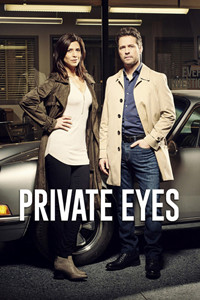 私家侦探第二季的海报