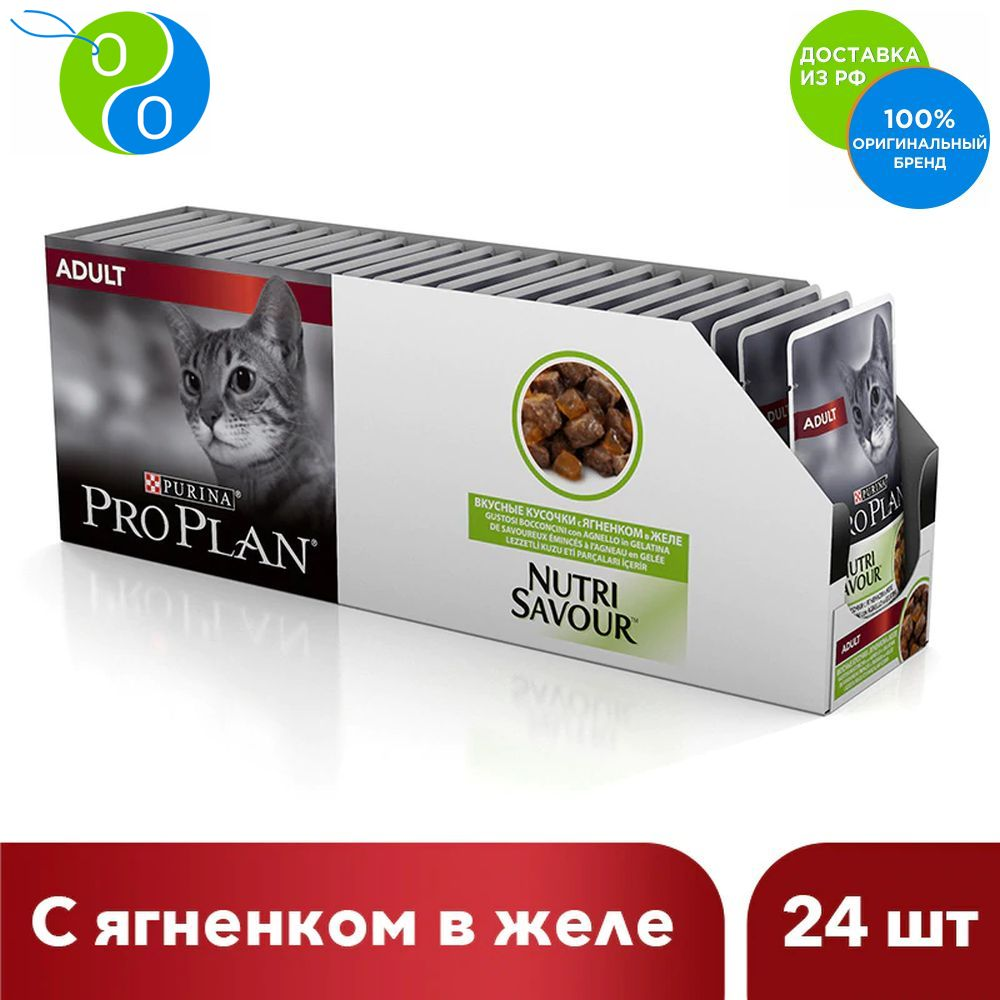 Set wet food Pro Plan adult cats with lamb jelly, Spider, 85g x 24 pcs.,Pro Plan, Pro Plan Veterinary Diets, Purina, Pyrina, Adult, Adult cats Adult dogs for healthy development, for healthy coat and skin, for neutered set wet pro plan food for adult cats living at home delicious slices of turkey in jelly 85g x 24 pcs pro plan pro plan veterinary diets purina pyrina adult adult cats adult dogs for healthy development for hea