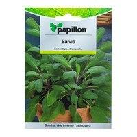 Nasiona aromatyczna szałwia (1 gram) w Pożywka dla roślin od Dom i ogród na