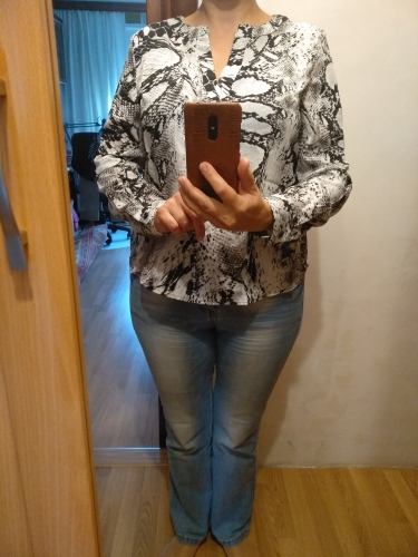 Grey Casual V Cut Neck Snake Skin Top Office Ladies Long Sleeve Workwear Shirt Autumn Women Tops And Blouses photo review