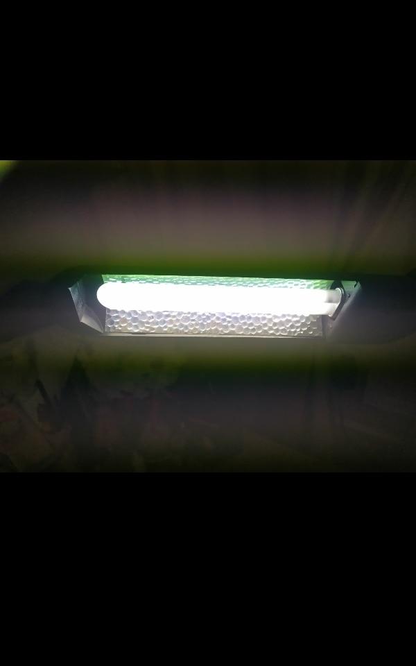 Lâmpadas LED e tubos Garantia Conduziu Lâmpada