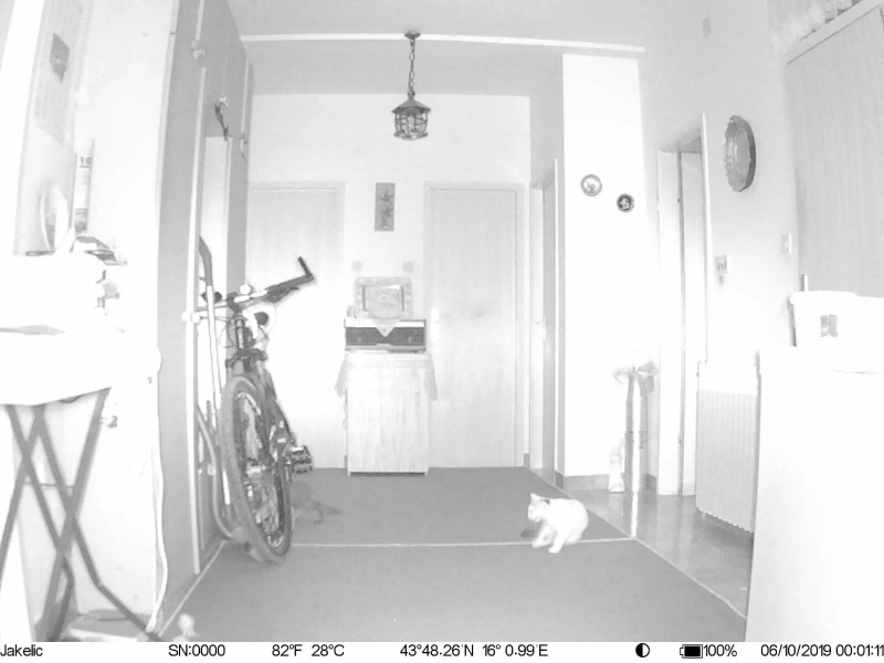 Câmeras de caça Câmera gravador fdd-lte