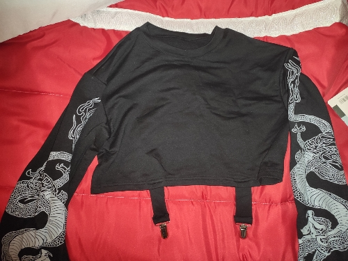 Gothic Crop Top with Dragon Print on the sleeves photo review