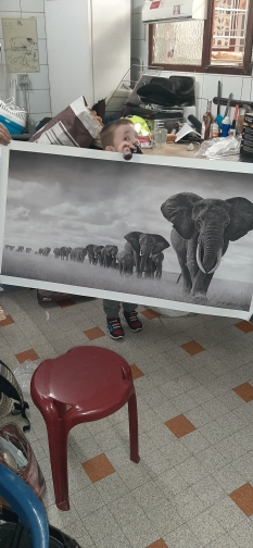 Black Africa Elephants Wild Animals Canvas Painting photo review
