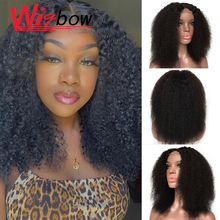 Afro Kinky Curly Wig 4x4 Pre Plucked Lace Wigs Indian Remy S