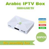 20 pcs Arabic IPTV BOX support Arabic/Swedish/Africa/ channels HD TV box,free watch two years arabic iptv Smart android tv