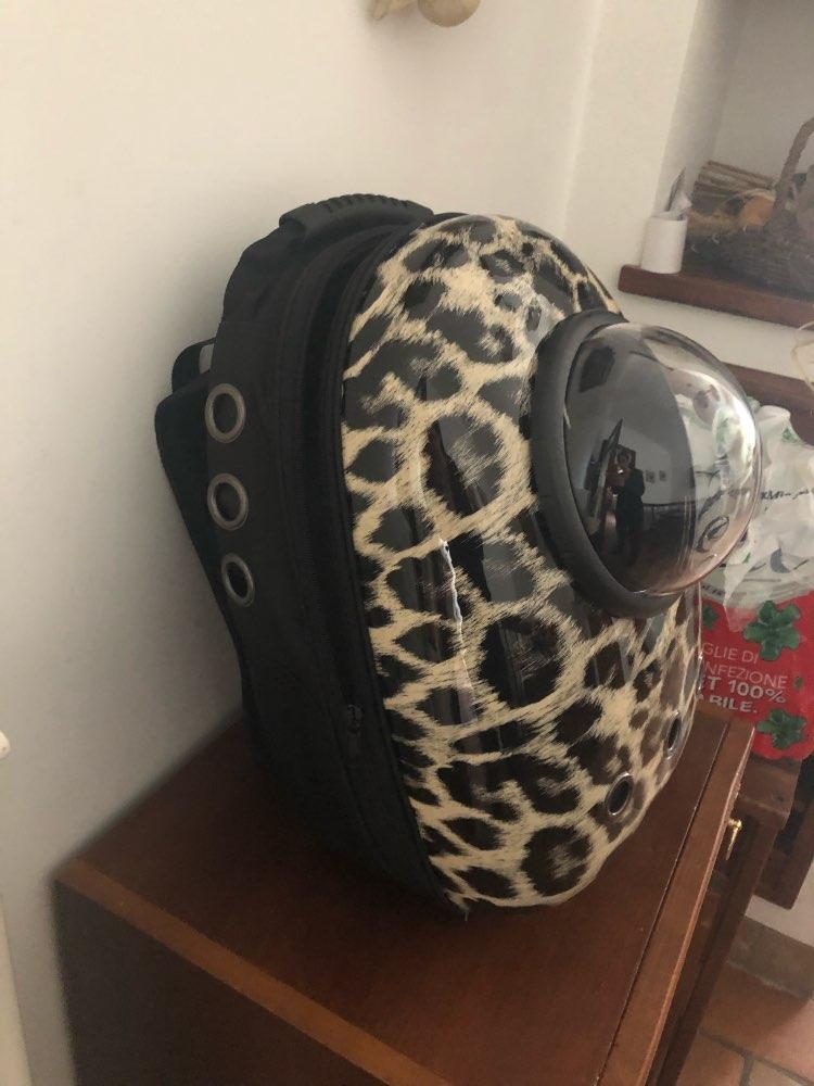 -- Bagpack Capsule Transparente