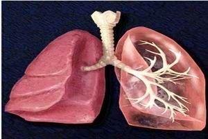 受凉引起的肺部感染应该如何用药-养生法典