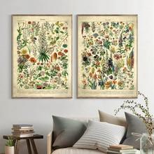 Flores francesas Fleur Vintage carteles e impresiones botánicos Retro pared arte lienzo pintura cuadros para la decoración del hogar de la sala de estar